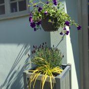 il-salice-planter
